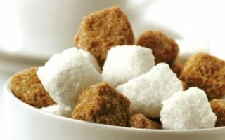 Government suggests Association of Sugar Producers to develop investment program to meet needs of domestic market